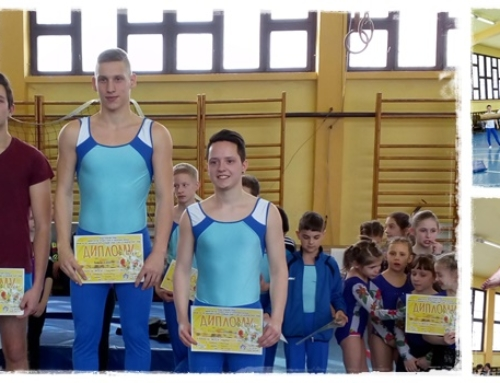 Окружно такмичење у спортској гимнастици